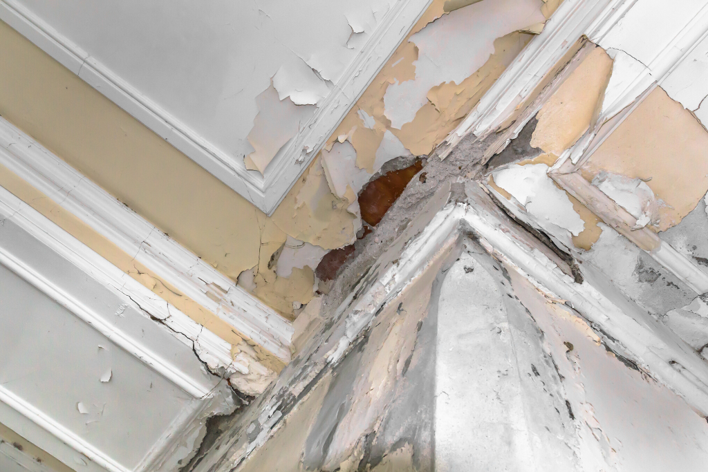 Water Damage Insurance Claims in Miami