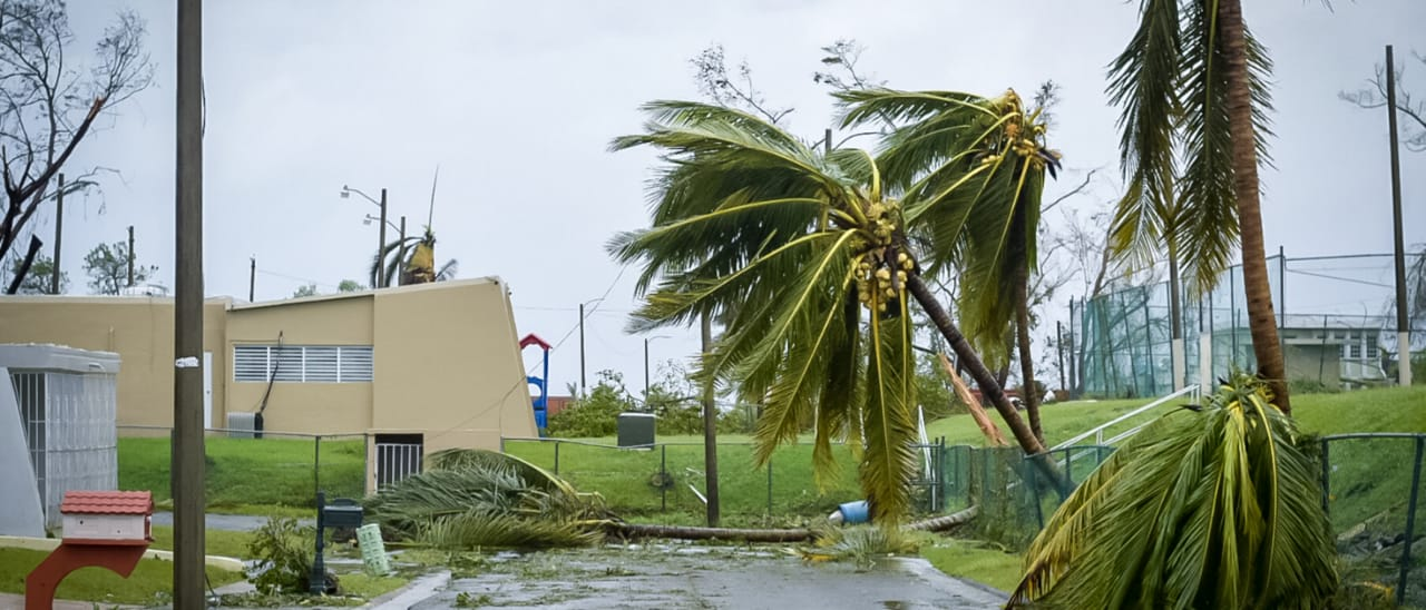 Hurricane Damage in Miami